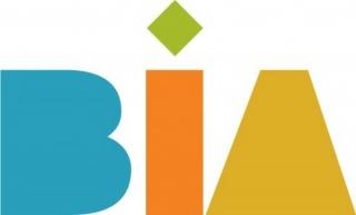 BIA 1- Bienal Internacional de Asunción