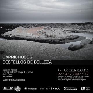 CAPRICHOSOS DESTELLOS DE BELLEZA