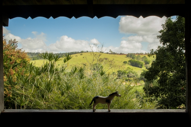 Caballito, de la serie Transparências de lar. Atibaia, San Pablo, 2014. Fotografía digital.