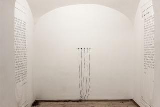 "Juliana Herrero, Exhibition Preview, from EXTIMA ""Cannon-Extima N.1"" 2018, excerpts ""Extimum"" 2012"