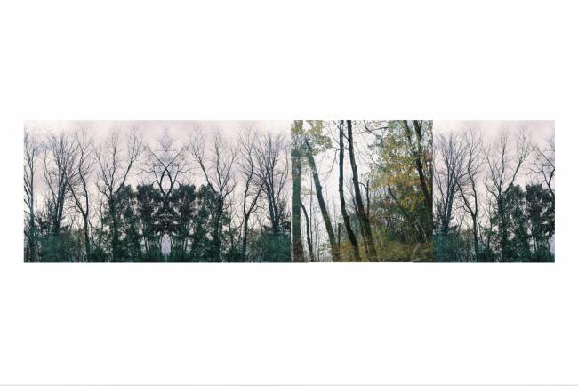 Temporality Landscape 4