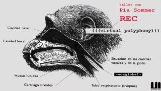 PEDAGOGÍA ONLINE | taller REC (((polifonías virtuales))) -vozglobal- con Pía Sommer en Materic.org