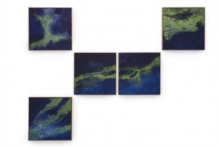 Paisagem marinha com cianobactérias, 2017, fresco, 193,5 x 259 cm / 63 x 63 cm each