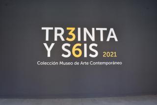 Tr3inta y s6is