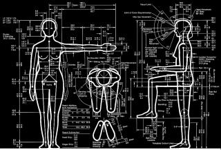 Humanscale 7b: Seated at Work Selector (Henry Dreyfuss) — Cortesía de Medialab-Prado