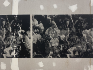 AAntonio Menchen, Untitled, 2021 Silkscreen print on plasterboard 107 x 142 cm