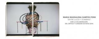 María Magdalena Campos-Pons, Entre luces y sombras