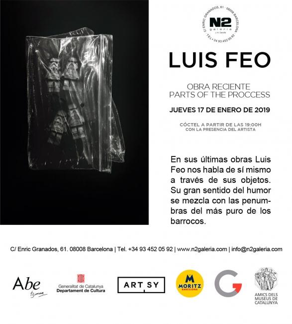 Luis Feo. Obra reciente. Parts of the procces