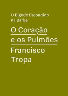 Francisco Tropa. O Coração e os Pulmões