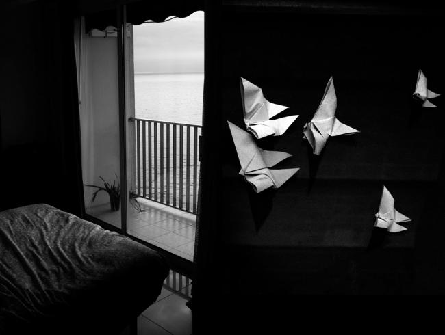 David Salcedo – Cortesía de Art Deal Project