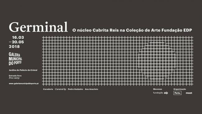 GERMINAL O núcleo Cabrita Reis na Coleção de Arte Fundação EDP