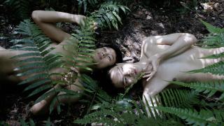 Zheng Bo. Pteridophilia 4 (2019). Vídeo (4K, cor som),  16 min.