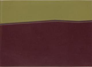 José Soto. Campos de color