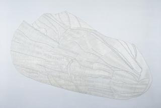 Pa de fil. 1998. Fil blanc sobre tela