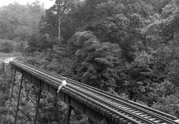 Hugo Brehme, Puente de Metlac, Veracruz, ca.1910 - Cortesía de Colecciones especiales del Museo Nacional de la Revolución