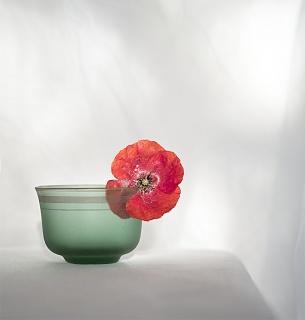 Emilia Valencia. Objetos de Japón 5 E.V. — Cortesía de PHOTOMUSEUM. Argazki & Zinema Museoa