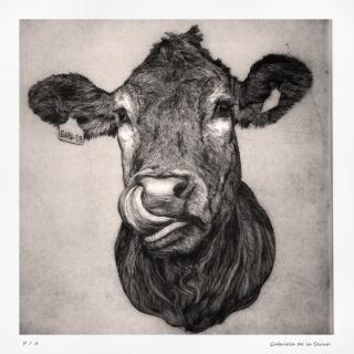 Vaca, Gabriela de la Serna