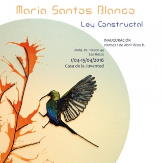 Ley Constructal