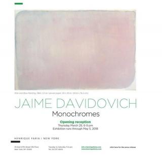 JAIME DAVIDOVICH: MONOCHROMES
