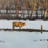 Pink Floyd cow, 40 x 40 cm.