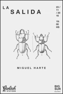 Miguel Harte, La Salida