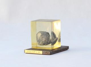 Semilla_ Norma Siguelboim_ Plomo y resina de inclusión (9cm x 12 cm x 10 h)
