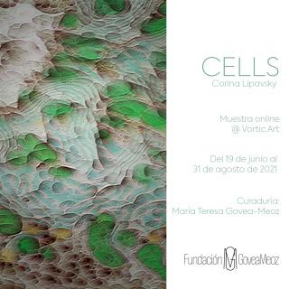 CELLS | Corina Lipavsky