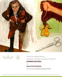Juan Carlos Román. Sombra natural