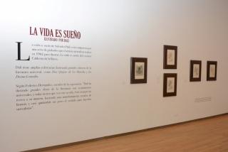 Dalí: Ilustrando Genios