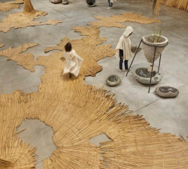 Ecosistema del agua. Premio Nacional MAC Lima Arte e Innovación 2019