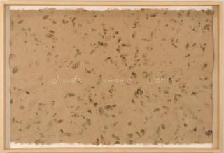 Miguel Ángel Rojas, Sueños raspachines (2007-2021). Dibujo perforado en papel de hoja de coca hecho a mano. Siete formatos  de 113 x 166 cm. c/u. Cortesía del artista. Exposición Regreso a la Maloca. Museo de Arte Moderno de Bogotá-MAMBO (2021).