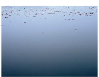 Manuela Marques, Lac 1,  impression pigmentaire sur papier baryté, 125 x 164 cm, éd. 3 + 2 A.P., 2017 — Cortesía de Galerie Anne Barrault