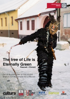 Pascual + Vinçent. The Tree of Life is Eternally Green