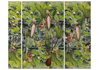 Obra de Rosana Schoijett en el Centro Cultural Borges. Cortesía del CCB.