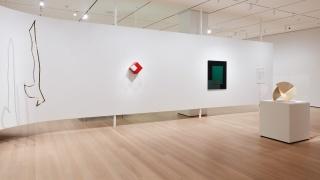 Vista de instalación de Sur moderno: Journeys of Abstraction: The Patricia Phelps de Cisneros Gift. © 2019 The Museum of Modern Art. Foto: Heidi Bohnenkamp
