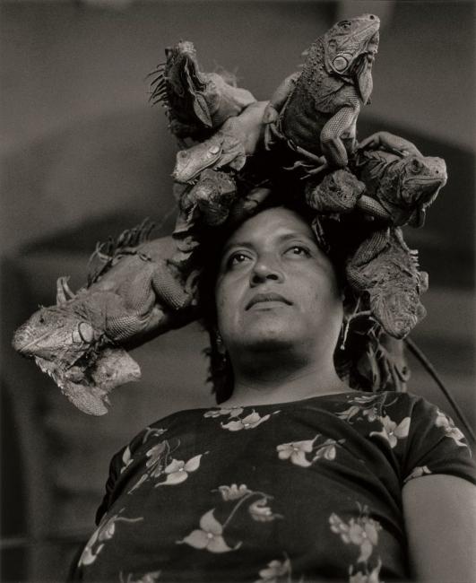 La Nuestra Señora de las Iguanas, Juchitán, Oaxaca, México, 1979 - Graciela Iturbide   Colecciones de fotografía de Fundación MAPFRE: una interlocución entre artistas y público