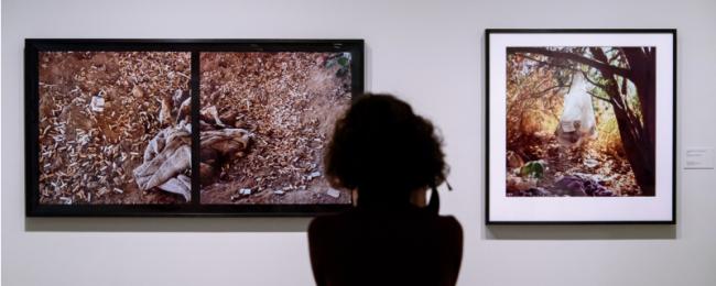 Cortesía de la Fundación MAPFRE | A vista de pájaro: novedades en Fundación MAPFRE, Guggenheim Bilbao, MALBA, MoMA, arteBA Fundación y más