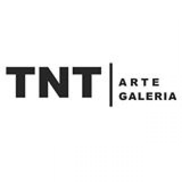 TNT Arte Galeria