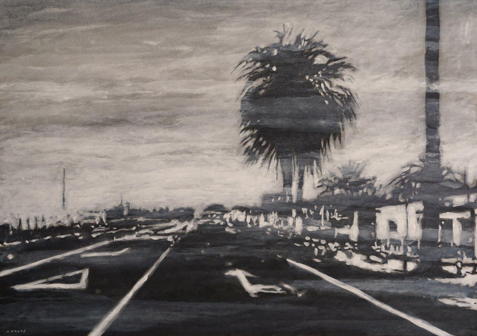 Carretera y palmera (2017) - Sebastián Navas