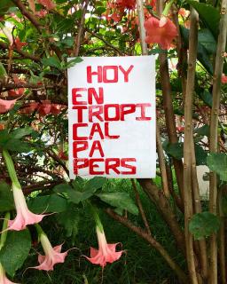HOY EN TROPICAL PAPERS BY JOSE RUIZ