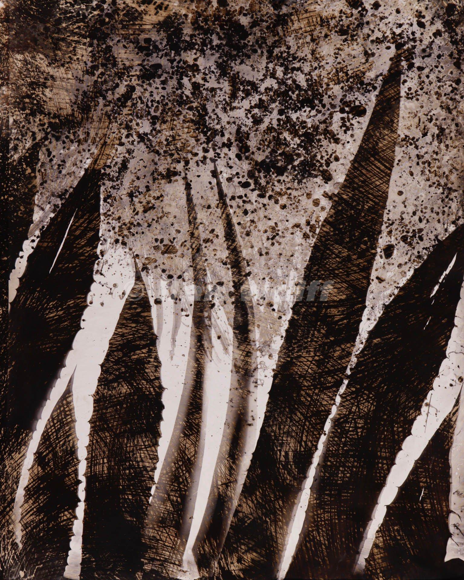 Cactus 2 (2011) - Ilan Wolff