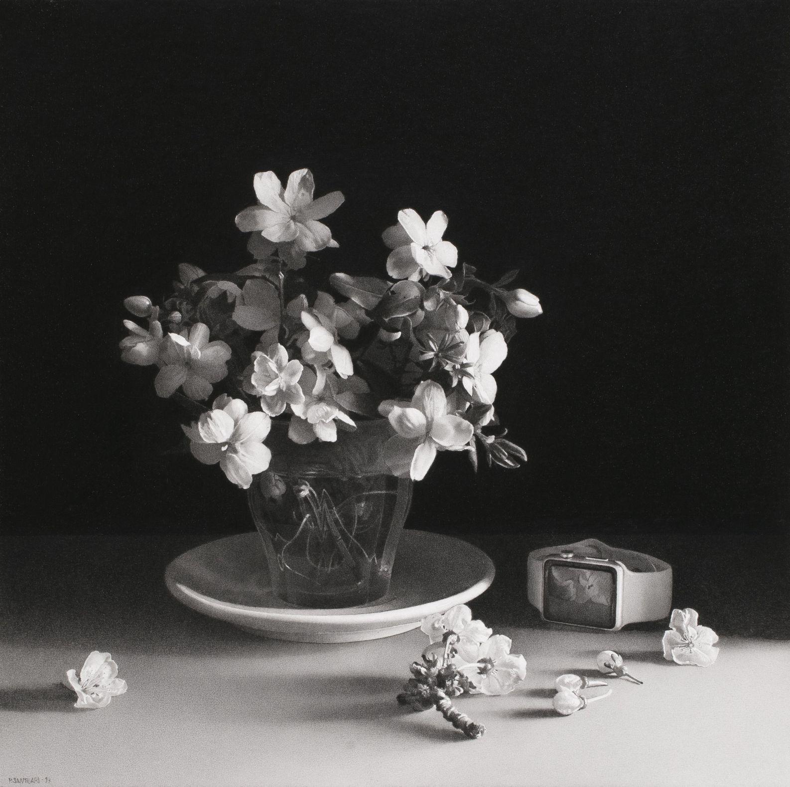 La efimera bellesa (2017) - Pere Santilari