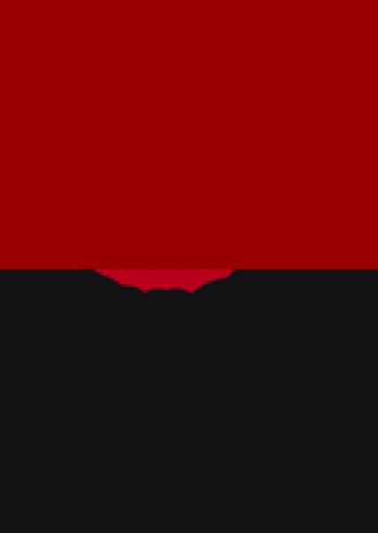 TGB Temporary Gallery Berlin