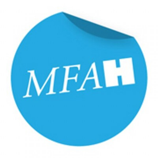 The Museum of Fine Arts Houston (MFAH)