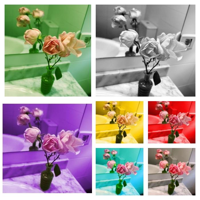 Siete trío rosa-rosae para Claude Monet (2007) - Juan Hidalgo Codorníu