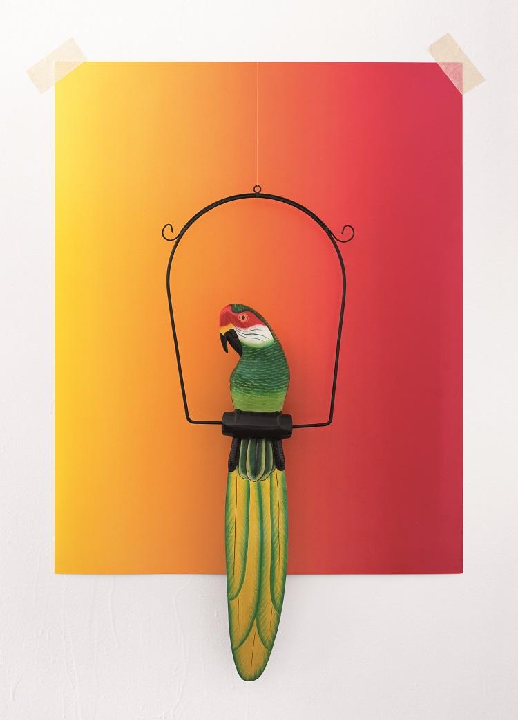 De la Serie Tropical Ornament