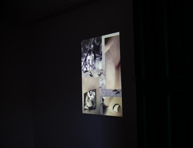 Exposición, videoarte. Aramauca