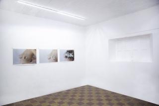 Aramauca - Plataforma para el Arte Contemporáneo