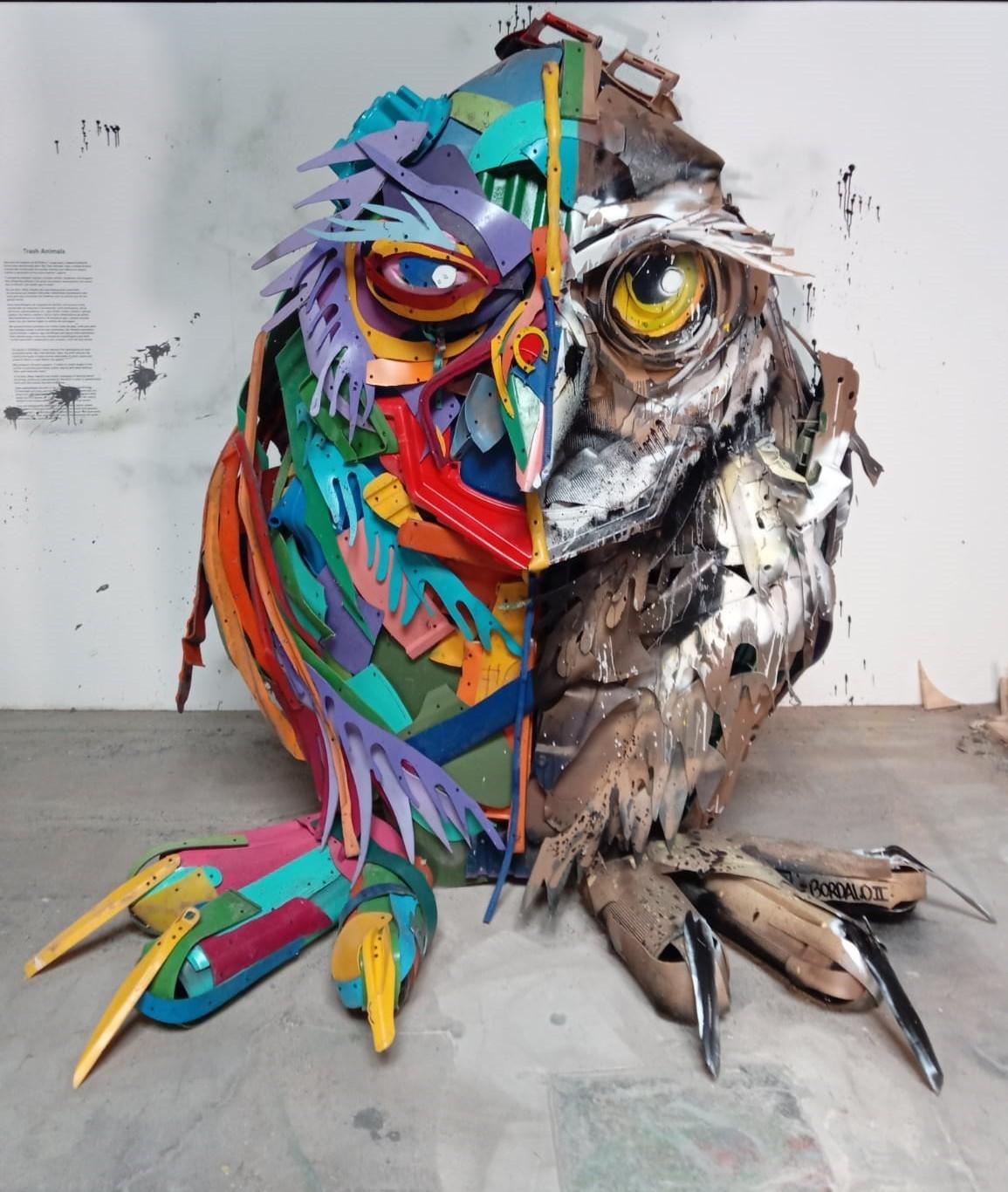 Half Young Owl