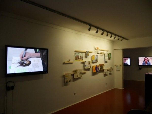 Exposición Margen de Error, Declinación Magnética